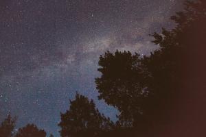 N. Lights-9